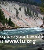 Learn to use the Go Fishing map on www.TU.org